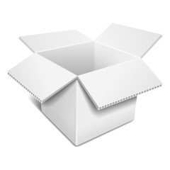 Empty open white cardboard box