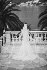 bride with long veil and train