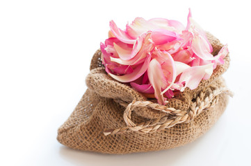 Pink lotus petals