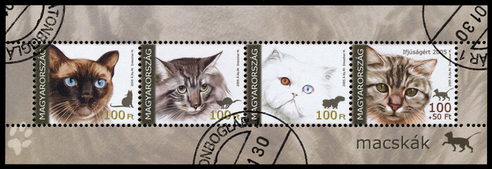 Stamp printed in Hungary shows cats
