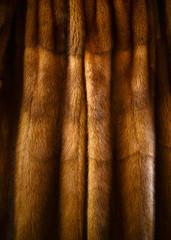 Fury animal coat