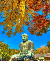 Kamakura Buddha, japan.