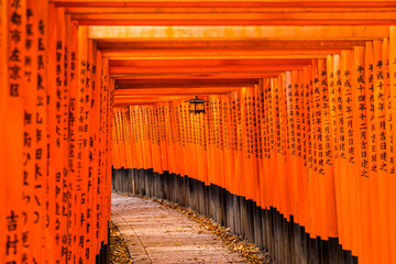 Fushimi Inari Taisha Shrine in Kyoto,
