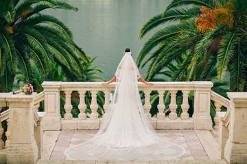 bride in luxury wedding dress back view