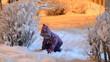 Happy beautiful little girl throws snow in winter, night lightin
