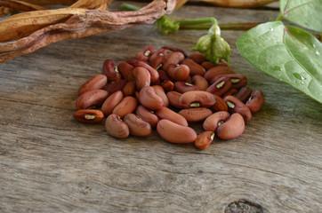 Red bean seed Organic