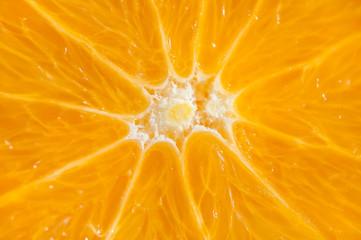 Macro image of orange