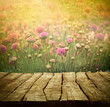 Flower background - 78573522