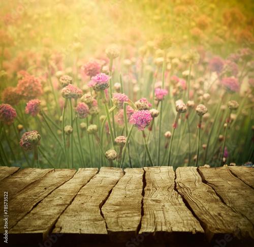 Flower background - 78573522