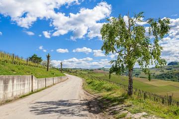 Rural road under blue sky in Italy.