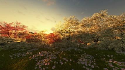 Spring scenery sunrise, mountain and lake, camera tilt