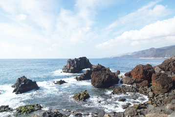 Canical, Madeira, Portugal, Europe