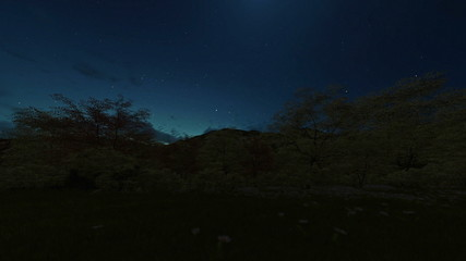 Spring scenery, timelapse night to day sunrise