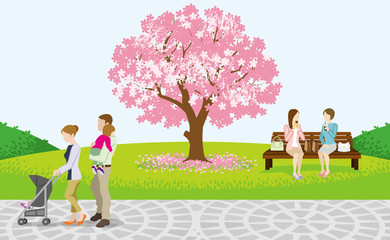 Cherry Tree and Cheerful People in Spring Park