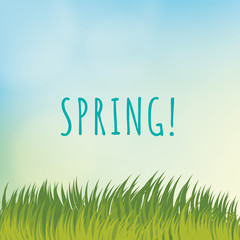 Vector spring template.