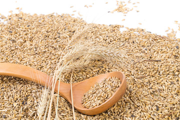 wheat grains with wood spoon