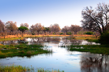 African water reflection