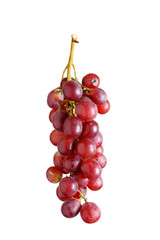 Grappolo d'uva , soggetto isolato sfondo bianco