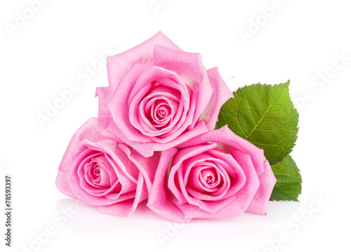 canvas print picture Three pink rose flowers