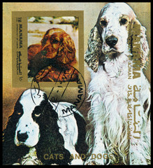 Stamp printed in Manama shows dogs