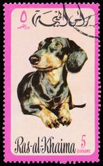 Stamp printed in Ras-al-Khaimah shows a dog