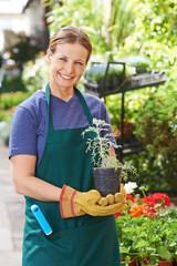 Frau bei Gartenarbeit in einer Gärtnerei