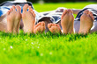 Family relaxing on the grass