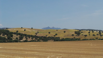 paysage aride espagne