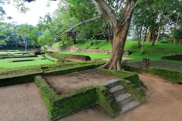 old garden in Sigiriya