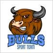 Bull Head Mascot - vector illustration for sport team - 78602393