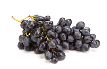 Branch of black ripe grapes.