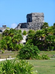 Temple with plants at Tulum in Mexico