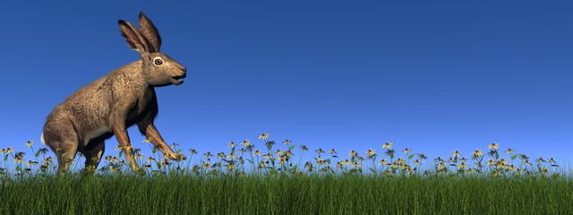 Running hare - 3D render