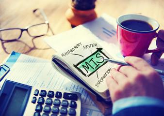 Management Information System MIS Data Development Concept