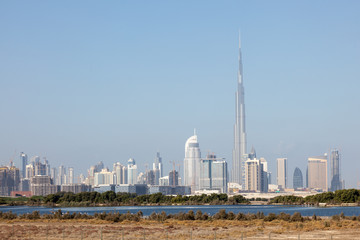 Skyline of Dubai City with the wildlife sanctuary in foreground