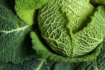 Savoy cabbage superfood
