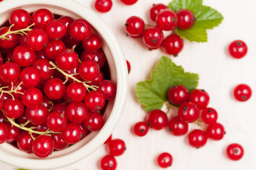 Red currant superfood in a bowl with green leaves