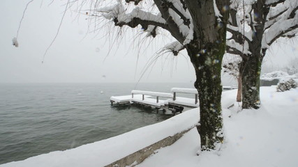 Snow covered pontoon and trees