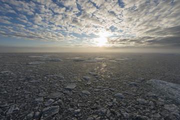 Pack on polar sea