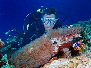 male diver anemone clown fish