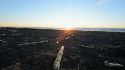 Sunset on a polar beach with driftwood