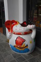 Happy cat in Hong Kong, China