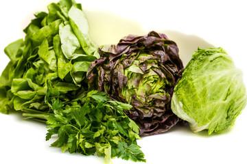 Different summer vegetables - parsley, lettuce, iceberg