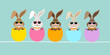 5 Cute Easter Rabbits Sunglasses Eggshells Retro