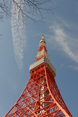 Close view on Tokyo Tower