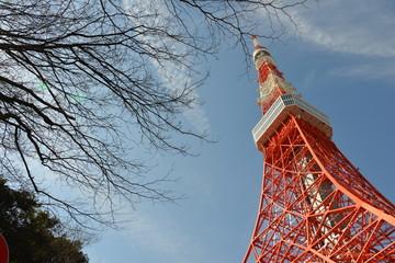 Tokyo Tower, Japan, Tokyo