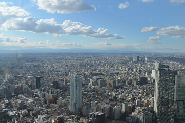 View over Tokio, Japan