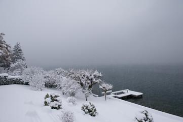 Lake shore in winter