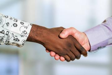 Detail of diverse business handshake.