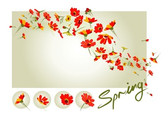 red spring is in the air, blooming flowers everywhere